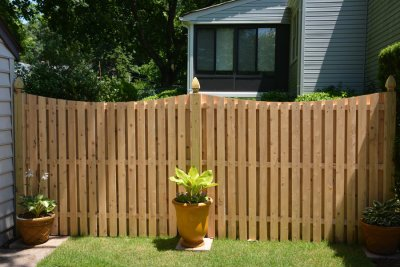 privacy - fence